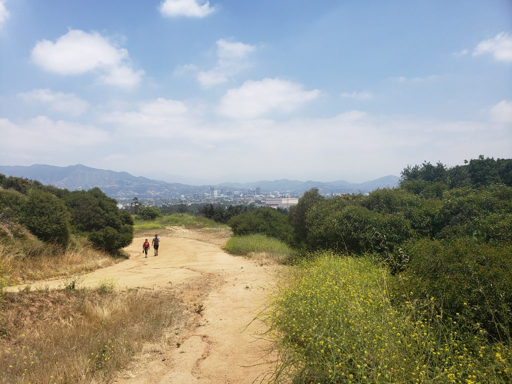 View of Glendale from the top of a trail in Griffith Park